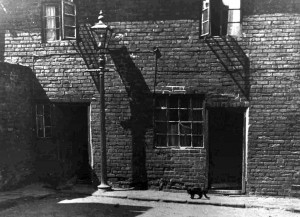 Rear of the houses in Deanery Row circa 1952