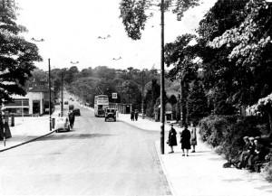 p055-newbridge-park